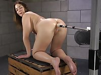 Brunette slut Blair Williams stuffs her ass and pussy with toys